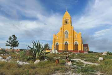 architecture_church_sint willibrordus_goats_curaçao (03).jpg