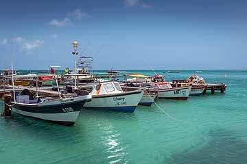 seafood-boats.jpg